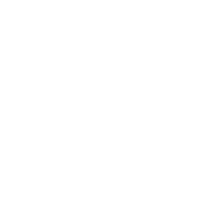 diemme